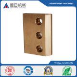 Carcaça da placa de cobre de fundição de aço inoxidável da exatidão elevada