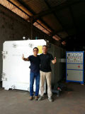 목제 기업을%s Dx-12.0III-Dx 재목 진공 건조용 기계