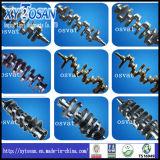 O eixo de manivela para o ferro de carcaça & forjou o aço (TODOS OS MODELOS)