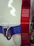Cinturón de seguridad con tres puntos de modo fijo (EW0313H)
