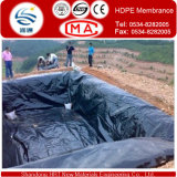Waterproof Materials를 가진 0.2-3.0mm HDPE Fish Water Pond Liner Geomembrane