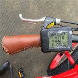 48V 500W Sable Fat Tire électrique Mountain Bike pour Lady