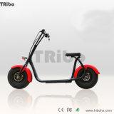電気スクーターのHalleyの電動機のHalleyの電気自転車の変換キットのCitycocoの電気バイク