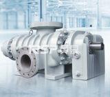 Doppelschrauben-Pumpe, doppelte Schrauben-Pumpe, Pumpe aus dem Programm nehmend, Mehrphasen- Schrauben-Pumpe