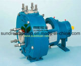 Process chimico Pump per Petrochemical Industry (CP)