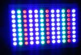 Indicatore luminoso di inondazione di alto potere di Dali DMX PWM Dimmable 600W RGB