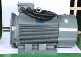 Motori asincroni 15kw H160 motore elettrico di induzione leggera di CA di 3 fasi per i compressori 90kw
