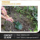 Comfortabele Landbouw die de Houten Schop van de Tuin van het Handvat Mini Graaf bewerken