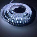 衣類のためのRGBW LEDのストリップ