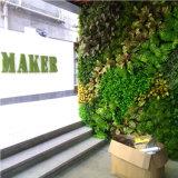 De populaire Kunstmatige Fabrikant van de Muur van de Installatie van de Muur van de Installatie Kunstmatige