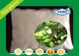 Estratto verde oliva del foglio dell'oleuropeina 4%~60%