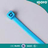 Relation étroite de fil en plastique de constructeur en nylon de serre-câble d'Igoto