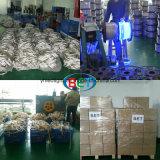Wasserdichter flexibler SMD5050 110V RGB LED Streifen LED beleuchtet Herstellung