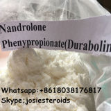 Nandrolone Phenylpropionate CAS 7207-92-3