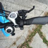 20inch, das fettes Fahrrad Rseb-509 des Gummireifen-500W E faltet