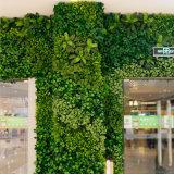 Fabricante artificial da parede da planta da parede artificial popular da planta