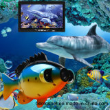 Câmara de vídeo subaquática do inventor dos peixes