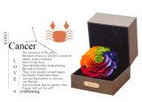 Ivenran ha conservato il fiore fresco del contenitore di regalo del Cancer