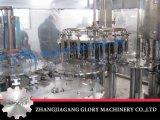 Máquina de rellenar del animal doméstico de la botella de Galss de la botella de la bebida automática del jugo