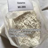 Потеря веса Sarm пудрит Enobosarm Ostarine Mk-2866