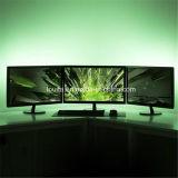 2812IC IP65 스크린 전시를 위한 꿈 색깔 디지털 LED 지구
