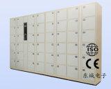 De Veilige Kast van de Opslag van de Bagage van het Metaal RFID