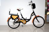 "36V 24 ""女性Public Electric Bike"