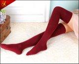 긴 무릎 소녀 형식 양말 압축 양말
