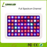 A Planta de LED Full Spectrum Cresce Luz com Switches Dimmable