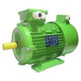 頻度可変的な及び速度規則モーターセリウムによって証明されるACモーター