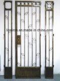 Quadratische oberste bearbeitetes Eisen-einzelne Türen mit seitlichen Lichtern