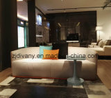 Sofá de madera de la tela de la sala de estar americana del estilo (D-82)