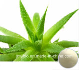 Hotsell Aloin a+B 20%-98%の自然なAloeのヴィエラのエキス/Aloe-Emodin