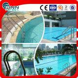 Verschiedener Entwurfs-Edelstahl-Swimmingpool-Handlauf