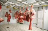肉ハングのより冷たい部屋または低温貯蔵部屋かフリーザーの倉庫