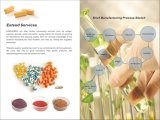 Estratto di erbe naturale Polyphenol/EGCG/Caffein del Verde-Tè dell'estratto per l'antiossidante