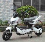 Recentste x-Mens 1000W Elektrische Scooter (de Raceauto van de Flits)