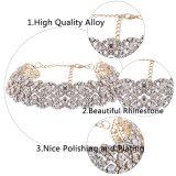 Ювелирные изделия ожерелья чокеровщика цветка диаманта Rhinestone Bling способа роскошные блестящие