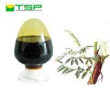 Extractum Glycyrrhizae, líquido de 7% Extractum Glycyrrhizae com certificação do PBF