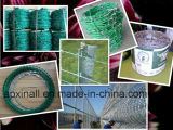 PVCによって塗られる電流を通されたアコーディオン式の有刺鉄線(XA-RW004)