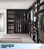 Caminhada de madeira moderna do estilo europeu nos Wardrobes