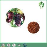 5% van uitstekende kwaliteit Resveratrol, 25% Polyphenols het Uittreksel van de Huid van de Druif