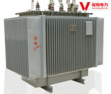 10kV Transformer Phase Trois transformateur Alloy / Amorphous