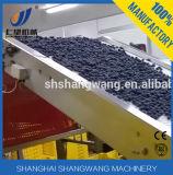 Linha de produção do suco da uva-do-monte com frasco de vidro