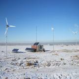 Granja inferior de la turbina del viento 2kw de la energía verde pequeña usar