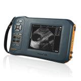 Ultrason ultrasonique tenu dans la main de vétérinaire de scanner de diagnostic d'équipement médical approuvé de la CE de Farmscan M50