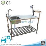 Medizinischer Edelstahl-Veterinärzergliederntisch des Haustier-Tier-304