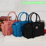 가장 새로운 제조자 여자 형식은 포장 /Handbag를 자루에 넣는다
