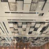 Потолок новой конструкции художнический подгонянный для украшения гостиницы нутряного