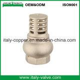 Válvula de verificação de bronze de Vetrical da mola da qualidade de OEM&ODM (AV5010-A)